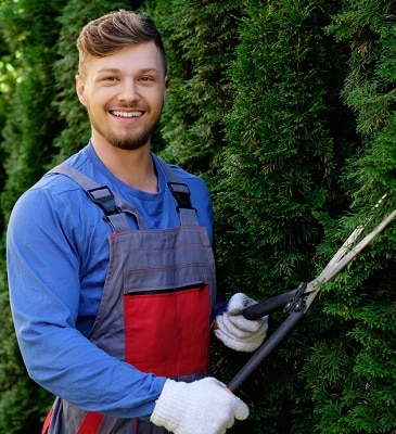 erie tree trimmers